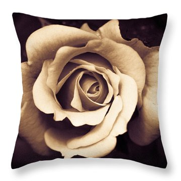 A Chocolate Raspberry Rose Throw Pillow by Wade Brooks