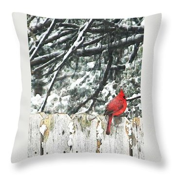 A Christmas Cardinal Throw Pillow