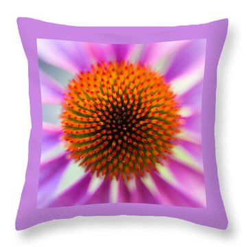 A Circle In A Square Throw Pillow