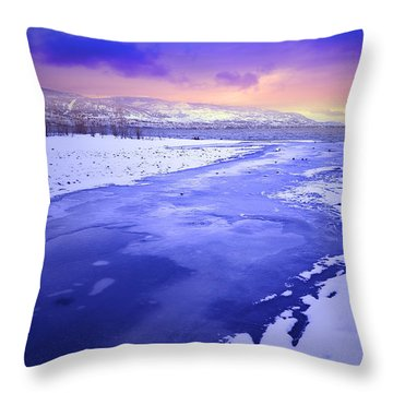 A Cold New Years Eve Throw Pillow by Tara Turner