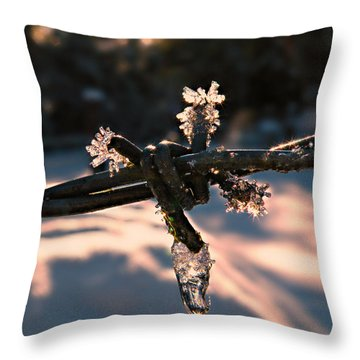 A Cold Welcome Throw Pillow