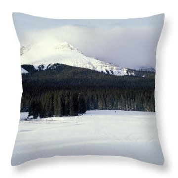 A Cold Wind Throw Pillow by Brent L Ander