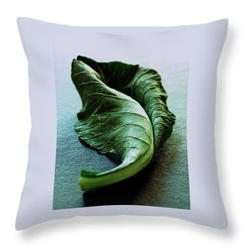 A Collard Leaf Throw Pillow