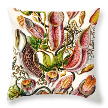 A Collection Of Nepenthaceae Throw Pillow by Ernst Haeckel