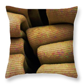 A Colorful Past Throw Pillow