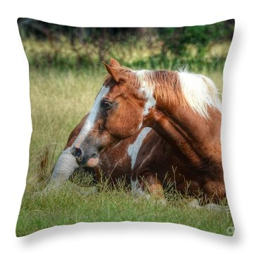A Comfy Resting Place Throw Pillow