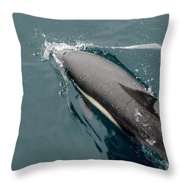 Barbara Steele Throw Pillows