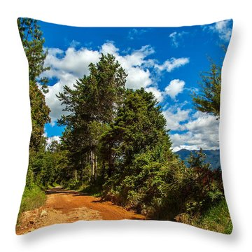 A Country Road In Colombia. Throw Pillow by Jess Kraft