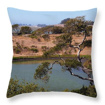 Throw Pillow featuring the photograph A Cove In Late Summer At Elkhorn Slough by Susan Wiedmann