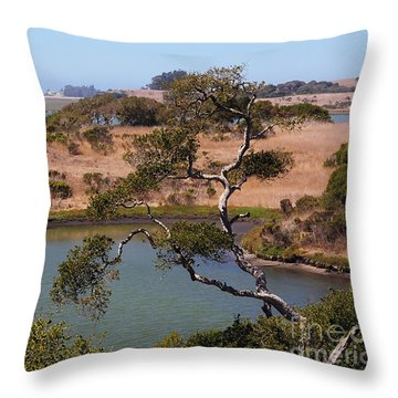 A Cove In Late Summer At Elkhorn Slough Throw Pillow
