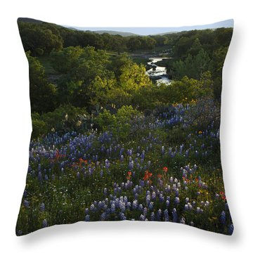 A Creek In Llano County  Throw Pillow