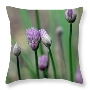 A Culinary Necessity Throw Pillow by Debbie Oppermann