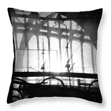 a crows life in South America Throw Pillow