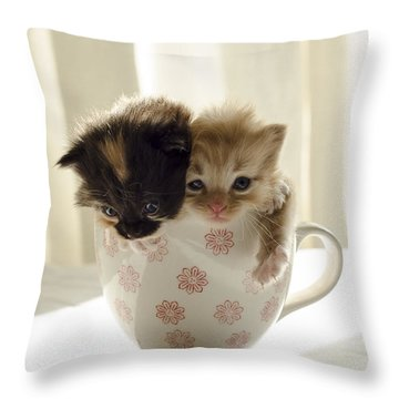 A Cup Of Cuteness Throw Pillow