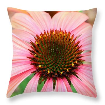 Throw Pillow featuring the photograph A Daisy For You by Elizabeth Budd