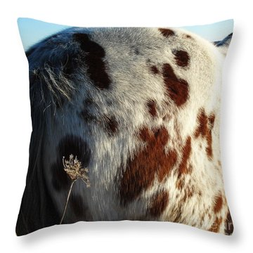 A Dapple Heart Throw Pillow