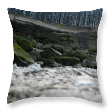 Throw Pillow featuring the photograph A Day At The River by Michael Krek
