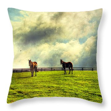 A Day In Kentucky Throw Pillow