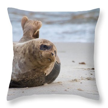 Throw Pillow featuring the photograph a day in the Sun by Ruth Jolly