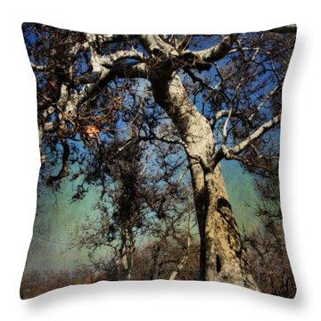 Park Bench Digital Art Throw Pillows