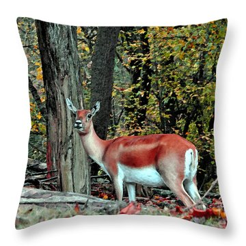 A Deer Look Throw Pillow