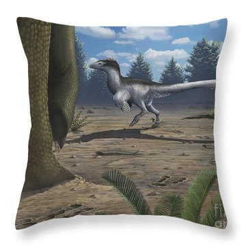A Deinonychosaur Leaves Tracks Throw Pillow by Emily Willoughby