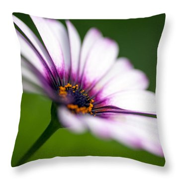 A Delicate Balance Throw Pillow