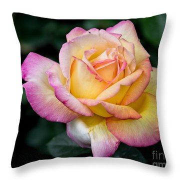A Delicate Rose Throw Pillow