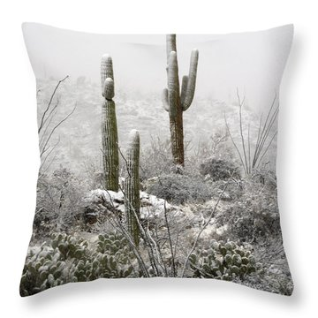 A Desert Snow Day  Throw Pillow by Saija  Lehtonen