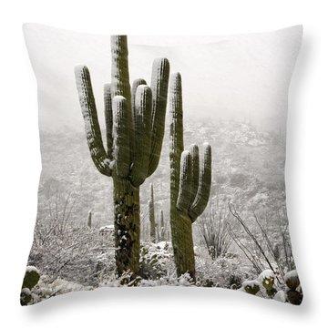 A Desert Southwest Snow Day  Throw Pillow by Saija  Lehtonen