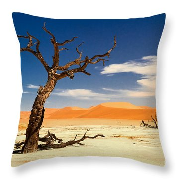 Throw Pillow featuring the photograph A Desert Story by Juergen Klust
