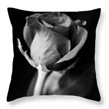 A Different Kind Of Love Throw Pillow by Christi Kraft