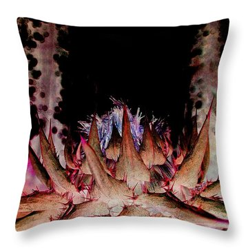 A Difficult Path  Throw Pillow by Shirley Sirois