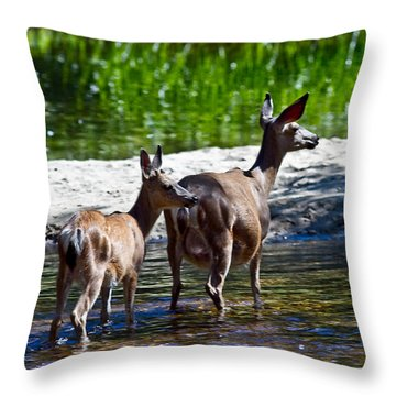 A Doe And Fawn Throw Pillow by Brian Williamson