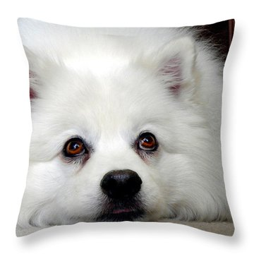 A Dogs Life Throw Pillow