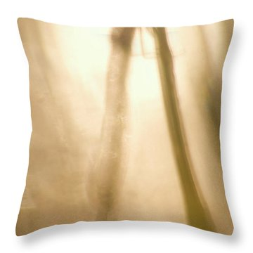 A Dragonfly In Early Morning Throw Pillow