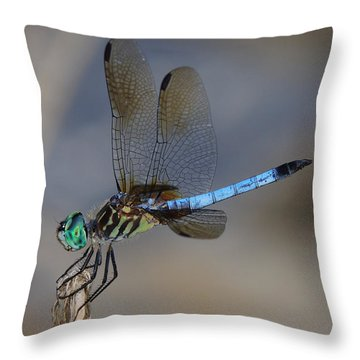 A Dragonfly Iv Throw Pillow
