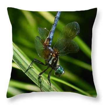 Throw Pillow featuring the photograph A Dragonfly by Raymond Salani III
