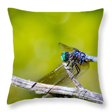 A Dragon's Perch Throw Pillow