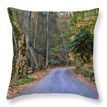 A Drive In The Country Throw Pillow by Paul Ward