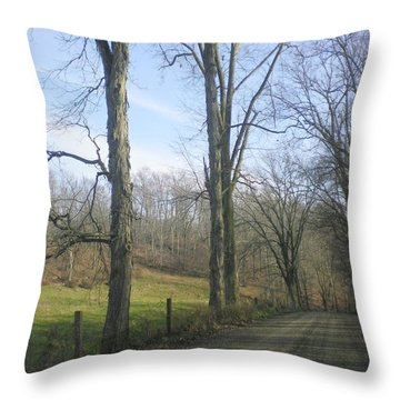 A Drive In The Country Throw Pillow by R A W M