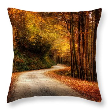 Throw Pillow featuring the photograph A Drive In The Mountains Of Western North Carolina by Greg Mimbs