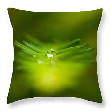 A Drop In The Green Throw Pillow by Sabine Edrissi