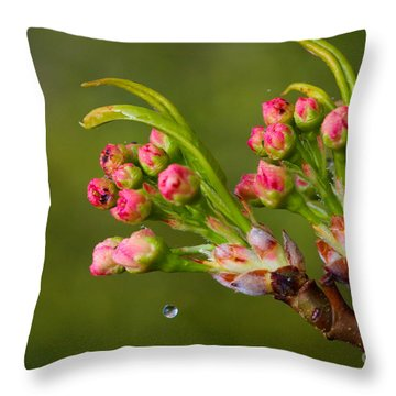 A Drop Of Water Throw Pillow
