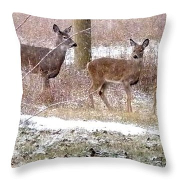 A Dusting On The Deer Throw Pillow