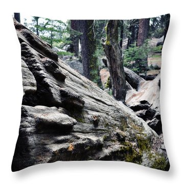 Throw Pillow featuring the photograph A Fallen Giant Sequoia by Kyle Hanson