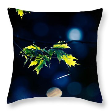 A Few Leaves In The Sun Throw Pillow