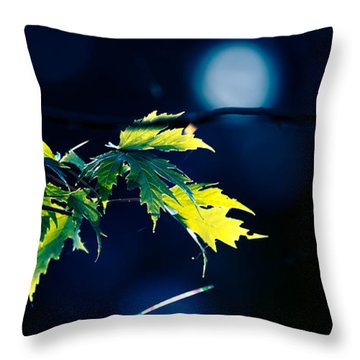 A Few Leaves In The Sun Two Throw Pillow