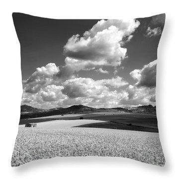 A Field Of Wheat. Limagne. Auvergne. France Throw Pillow by Bernard Jaubert
