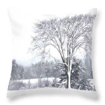A Field Tree In Winter Throw Pillow